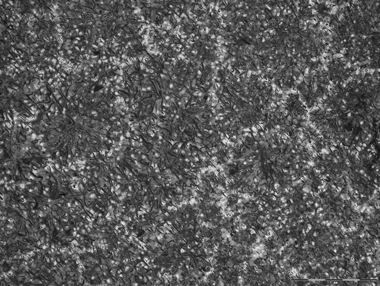 Bild 1: Makrogefüge von Gusseisen mit Lamellengrafit im Sandguss. Die eutektischen Körner sind durch Ätzen sichtbar gemacht worden, 10:1. Quelle: Maria Paz Arrula, Fagor Ederlan Tafalla