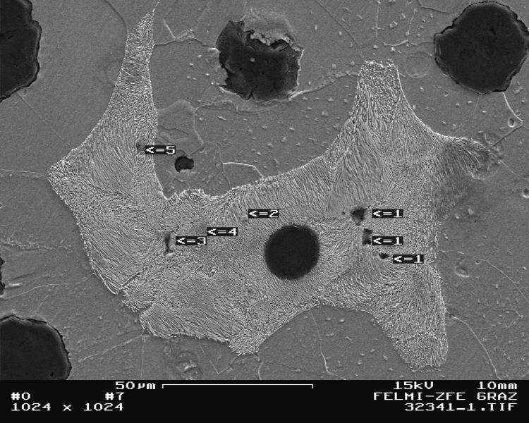 Bild 2: Nichtmetallische Einschlüsse im Erstarrungsgefüge von GJS, hier eingelagert in Perlitbereichen, 500:1, geätzt