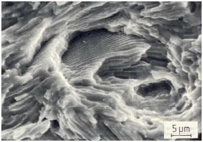 Bild 1b: Schwingbruchfläche aus Bild 1a, 2000:1
