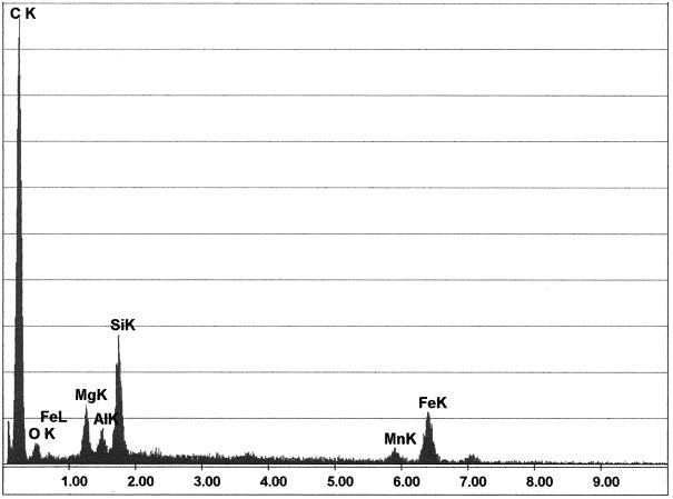Bild 4: Elementekonzentration (EDX-Messung) in Messpunkt 2 aus Bild 3 (Quelle: FT&E)