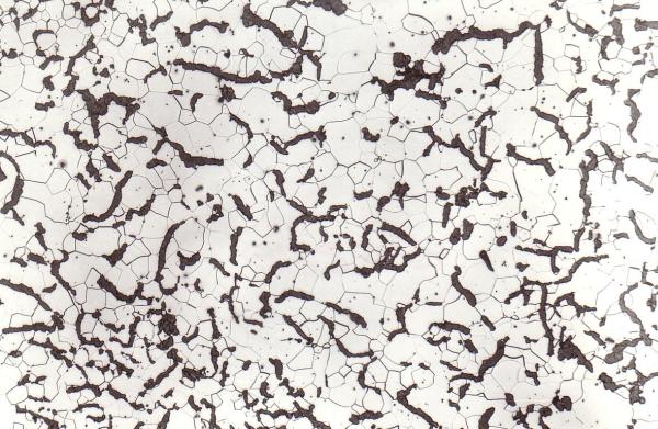Bild 2: Gefüge von Gusseisen mit Vermiculargrafit (GJV-300), ferritisches Grundgefüge, ideale Grafitausbildung