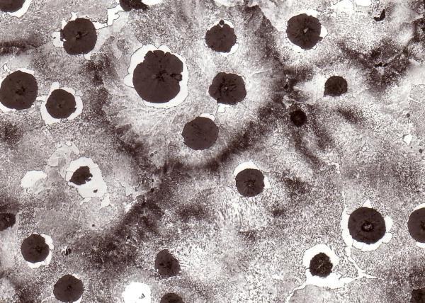 Bild 1: Grundgefüge eines perlitischen Gusseisens mit Kugelgrafit, 200:1, geätzt