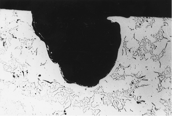 Bild 2: Schliff des in Bild 1 gekennzeichneten Pinholes bei einer Vergrößerung 100:1