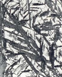 Bild 2: wie Bild 1, V = 1500:1
