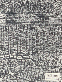 Fig. 1: White carbidic cast iron, 300:1
