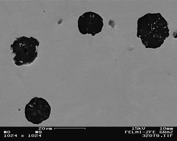 Fig. 2:  Basic structure of ferritic nodular graphite cast iron, 1000:1, etched