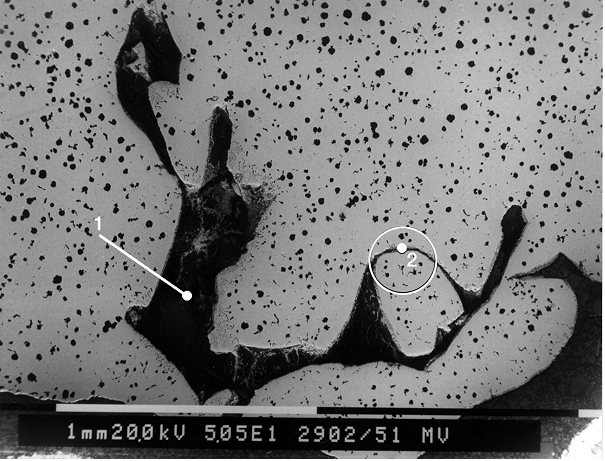 Fig. 3: SEM image of lustrous carbon inclusions, points 1 and 2 are EDX measuring points (source: FT&E)