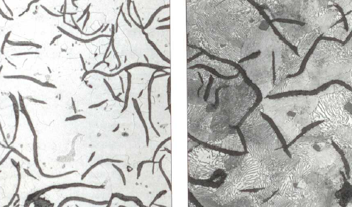 Fig. 1: Micro-structure of GJL, ferritic on the left, pearlitic on the right with embedded graphite flakes, 200:1