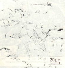 Fig. 1b: Supercooled D graphite, not etched, 500:1