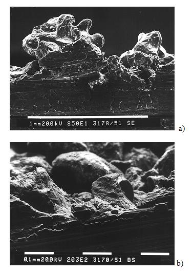 Fig. 3: REM images of the penetrated sections (highlighted in Figure 1), no traces of sintering can be observed