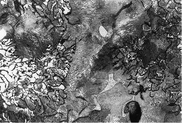 Bild 3: Grundgefüge der in Bild 1 gekennzeichneten Schwitzperle, deutlich ist das Phosphideutektikum zu erkennen, Vergrößerung 100:1, geätzt mit HNO3