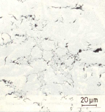 Figure 1: D graphite, not etched, optical microscope, 500:1