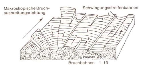 Fig. 1: Fatigue striation marks (schematic)