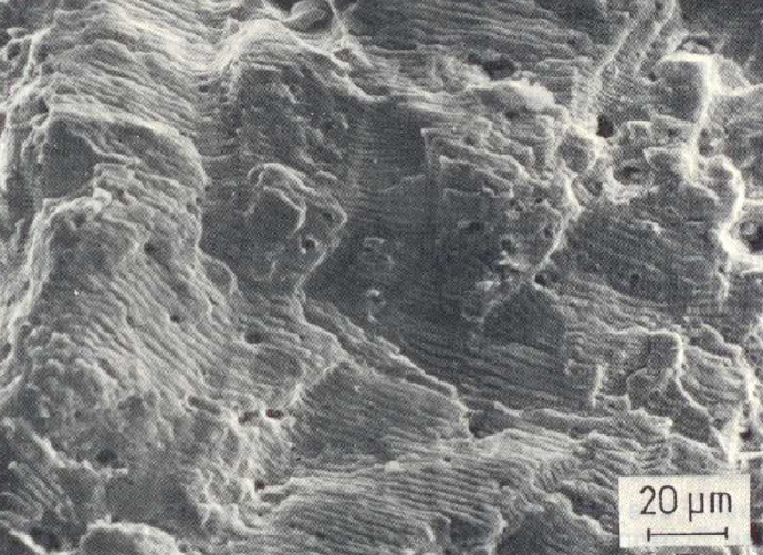 Fig. 2:  Fatigue rupture surface of a CrNi steel material, Fracture marks and non-metal impurities or holes, 500