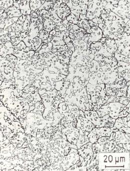 Fig. 4: Coarse-grained cementite, 500:
