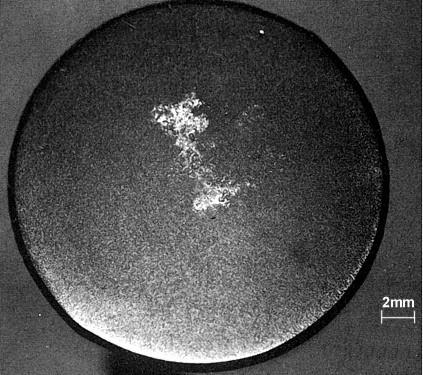 Bild 1: Makrogefüge einer Zylinderprobe (50 mm) mit weiß erstarrter Kernzone