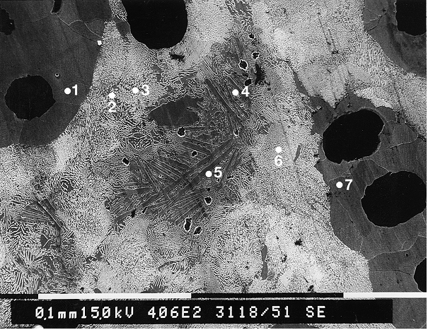 Bild 4: REM-Übersichtsaufnahme eines Gefüges mit umgekehrter Weißeinstrahlung, die dunklen Bereiche sind hier Ferrit, die hellen Perlit, die Streifen in der Mitte sind Karbid bzw. weißerstarrtes Gefüge; Die Punkte 1 bis 7 sind die Messpunkte für EDX-Analysen zur Bestimmung der Siliziumkonzentration (Quelle: FT&E)