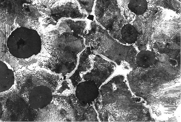 Fig. 9:  SEM image to determine the concentration of the individual elements, 75 mm wall thickness, magnification 800:1