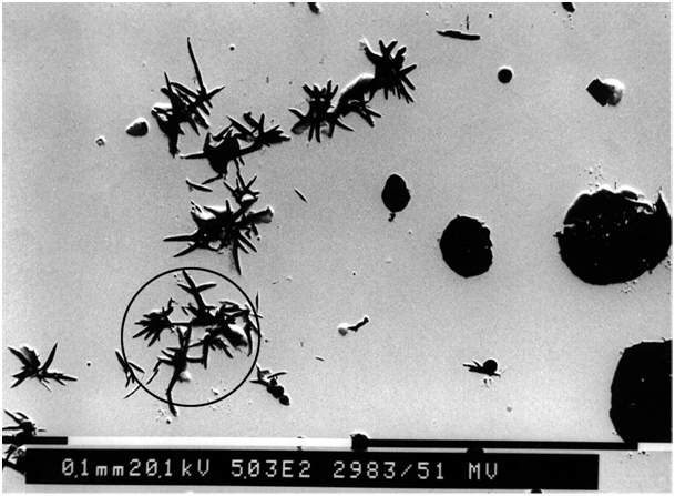 "Fig. 4: ""Spiky graphite"" due to increased titanium levels in GJS (SEM image)"