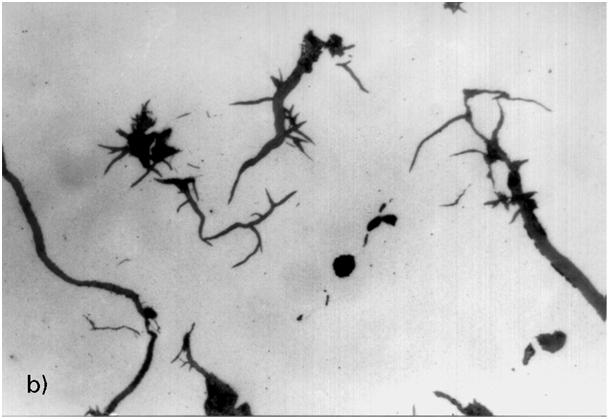 Fig. 7:  Graphite degeneration due to increased lead concentration. The interference threshold (concentration limit) has obviously been exceeded (Pb content 0.006%), a sudden drop in nodule formation can be seen, 300:1