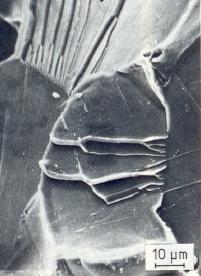 Bild 1: REM-Aufnahmen von einem interkristallinen Bruch, 1000:1