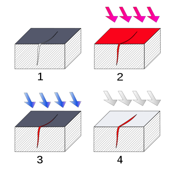 Fig. 1: Dye-penetrant test (source: Wikipedia)1. Cleaning2. Applying dye and waiting for it to penetrate into the specimen3. Cleaning the surface4. Applying developer