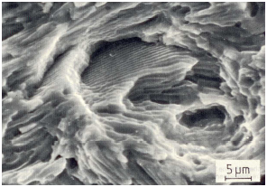 Fig. 1b: Fatigue failure surface from fig. 1a, 2000:1