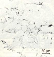 Bild 1: D-Grafit, ungeätzt, Lichtmikroskop, 500:1