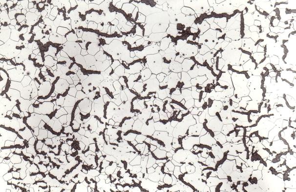 Bild 2: Gefüge von Gusseisen mit Vermiculargrafit (GJV-300), ferritisches Grundgefüge, ideale Grafitausbildung, 100:1