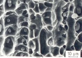 Bild 2: Zeilige Anordnung von Nichtmetallischen Einschlüssen und Waben, 3000:1