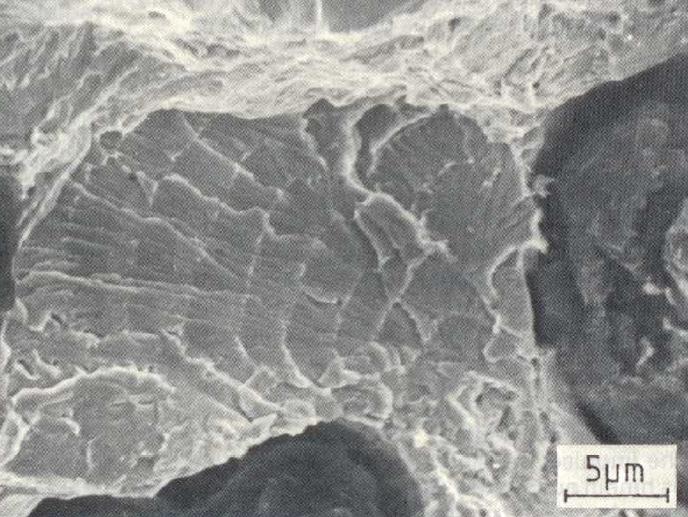 Bild 3: Spröder Dauerbruch bei GJS 500, 3000:1
