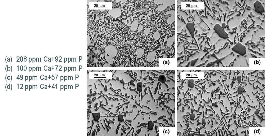 Bild 3: Al Si12CuNiMg, Einfluss von Kalzium auf die Kornfeinung des Primärsiliziums