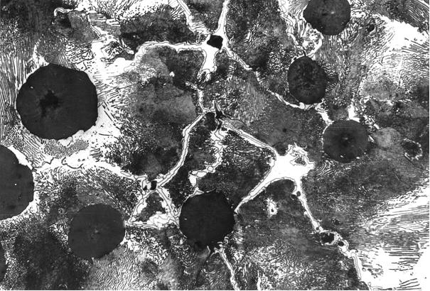 Bild 9: REM-Aufnahme zur Ermittlung der Konzentrationen der einzelnen Elemente, 75 mm Wanddicke, Vergrößerung 800:1