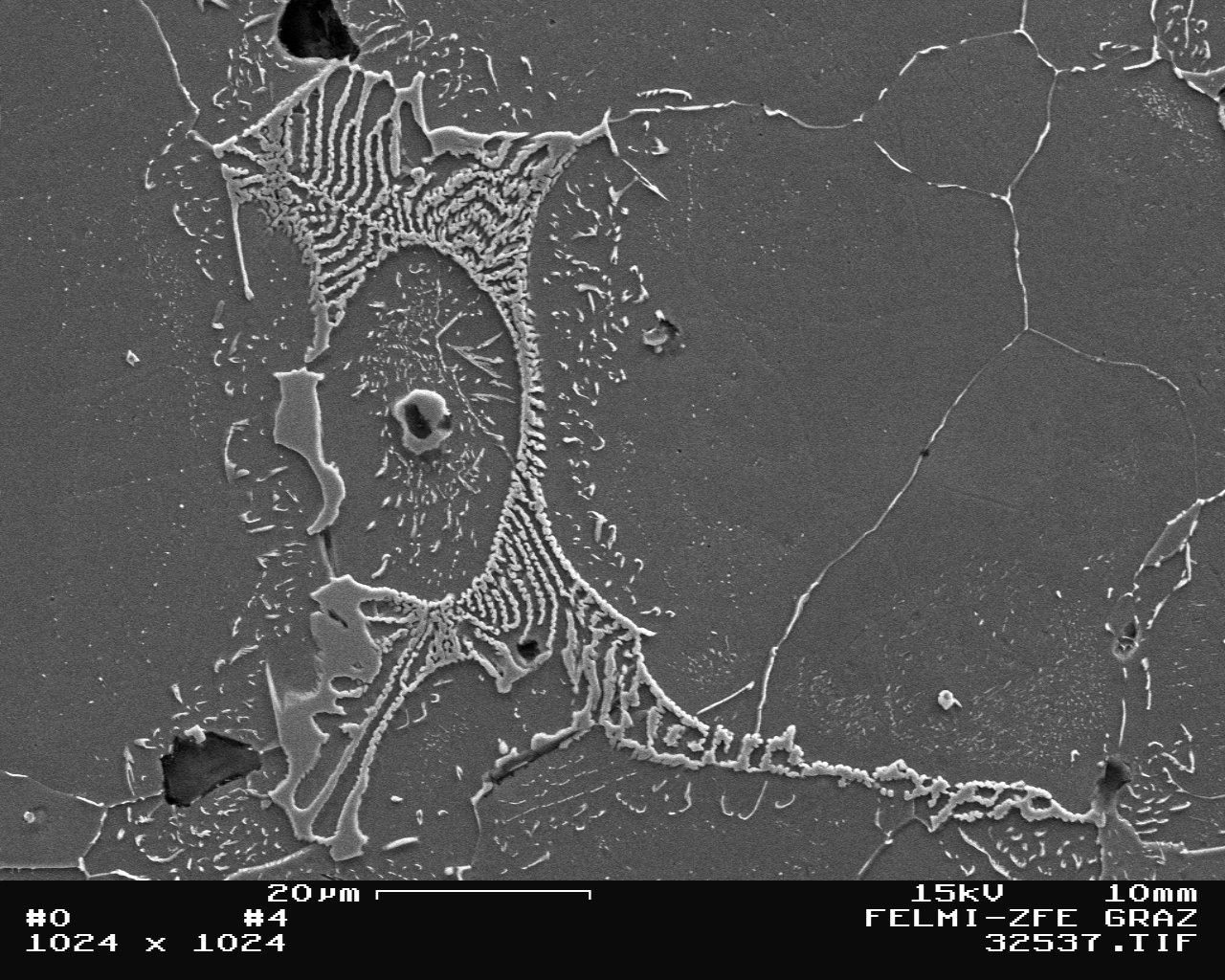 Bild 8: REM-Aufnahme von Karbiden