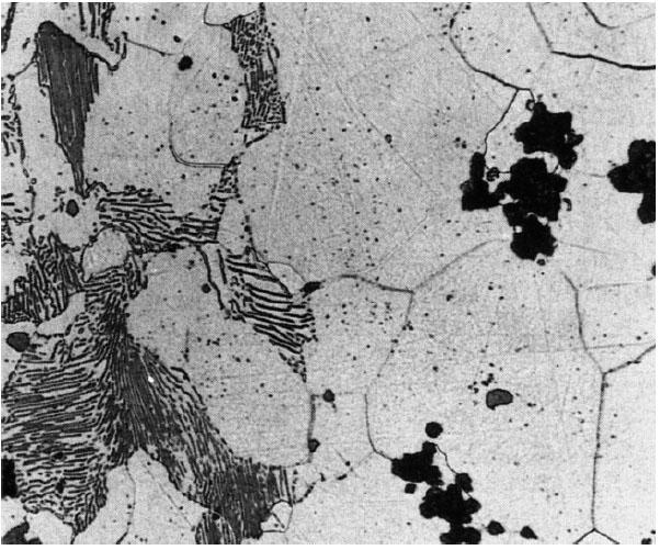 Bild 2: Gefüge von weißem, perlitisch, ferritischem Temperguss, 200:1