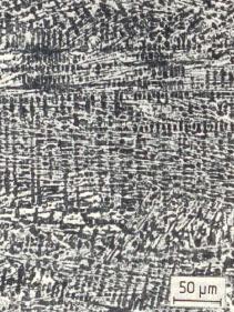 Bild 1: Weißes, karbidisches Gusseisen, 300:1