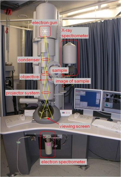 Bild 2: Tanssionselektronenmikroskops FEI Tecnai TF20 - monochromiertes FEG-TEM/STEM mit EDX und EELS-Spektrometern am FELMI-ZFE-Graz, Österreich