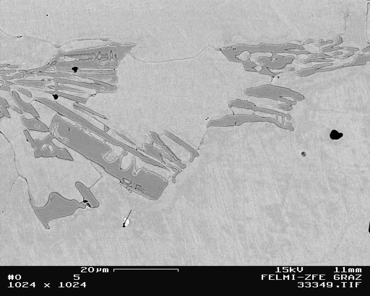 Bild 3: Chromcarbide im austenitischen Gusseisen mit Kugelgraphit(Cr-Gehalt 1,0 -3,5 %; Ni-Gehalt 18 –2 2 %), 1000:1, geätzt