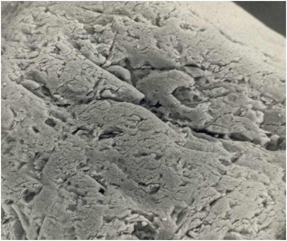 Bild 2: Glatte Kornoberfläche von Quarzsand, 1000:1