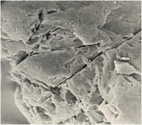 Bild 4: Stark zerklüftete und zerfurchte Kornoberfläche von Quarzsand, 1000:1